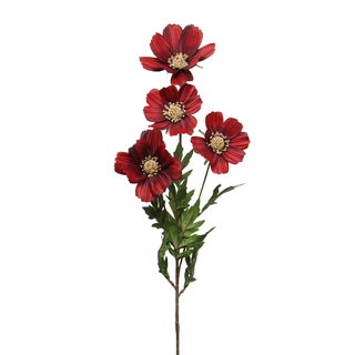 Burgundy Cosmos x 4 with 8 Leaves