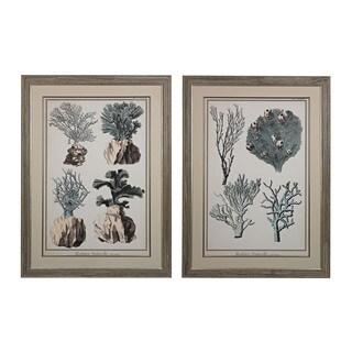Coral Species I, II' Oversized Fine Art Giclee Under Glass Wall Art