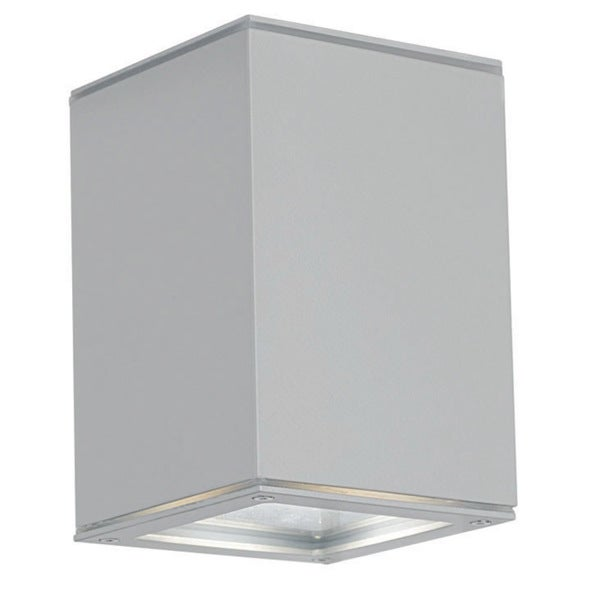50-watt Silver Outdoor Ceiling Light