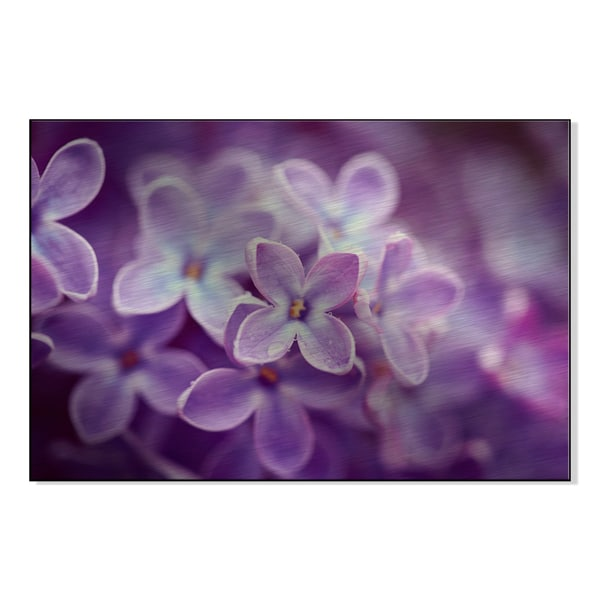 Lilac flowers close up Print on Mounted Metal Wall Art