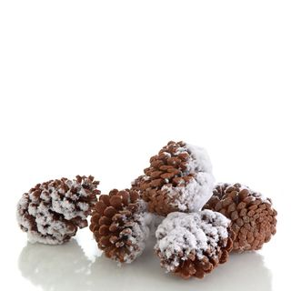 "Snow Drift Collection 4.25"" Pinecones in Bag Pack of 3"