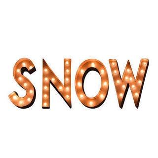 Indoor/Outdoor Typography 'Snow' Marquee Lights