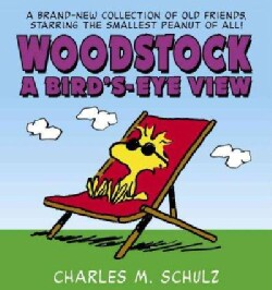 Woodstock: A Bird's-eye View (Paperback)
