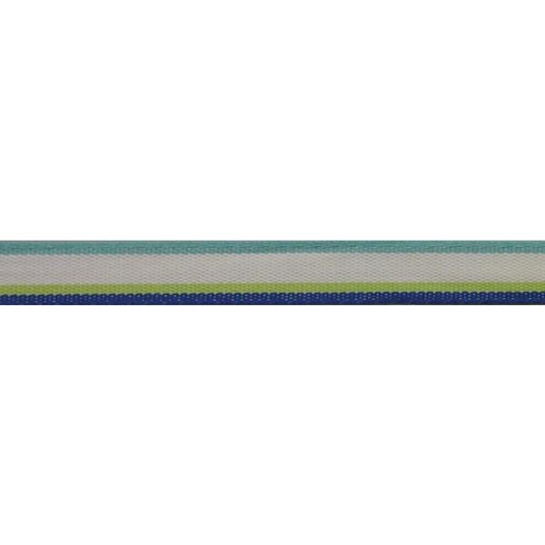 """Ruban Diego Ribbon 1/2""""X3.28 Yards-Blue Multi"""