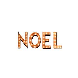 Indoor/ Outdoor Holiday Typography Noel Marquee Lights by Iconics