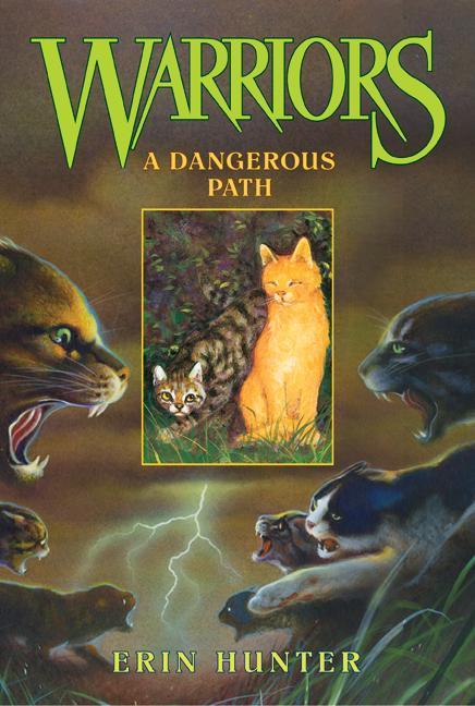 A Dangerous Path (Paperback)