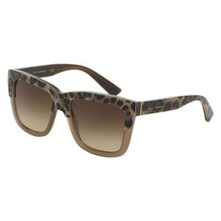Dolce & Gabbana Women's DG4262 Brown Plastic Square Sunglasses