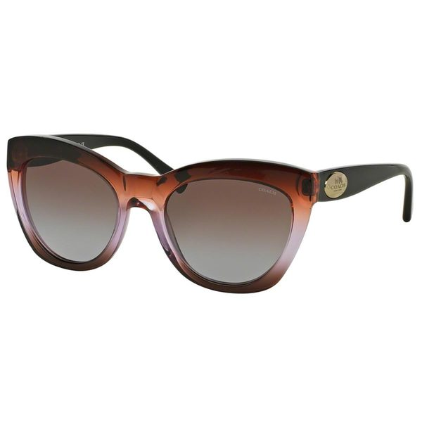 Coach Women's HC8151F Brown Plastic Cat Eye Sunglasses