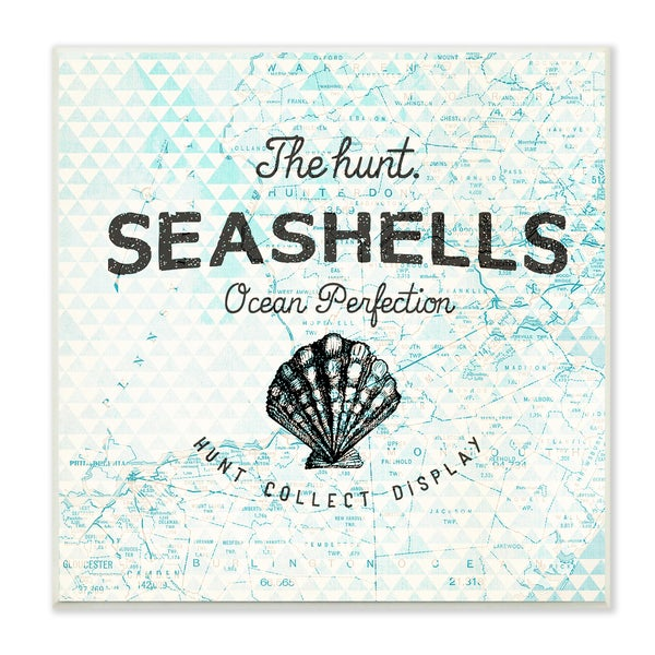 Seashells Hunt Collect Display with Shell Wall Plaque