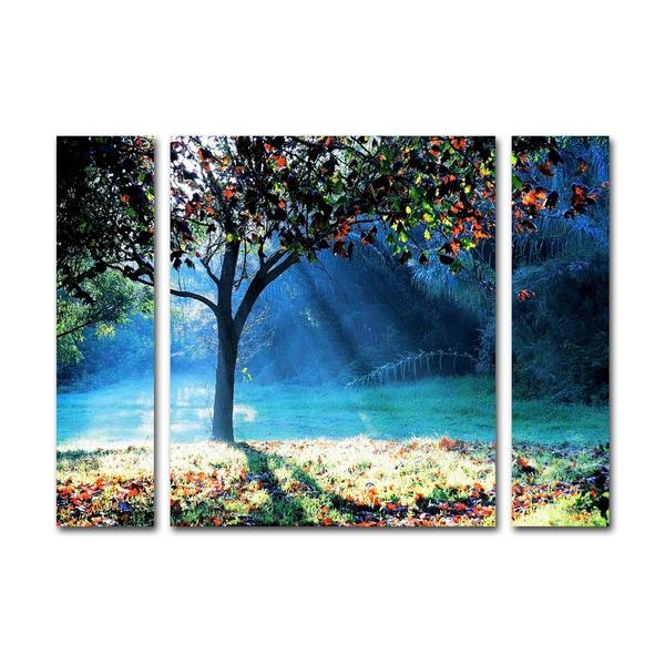Beata Czyzowska Young 'Rays of Hope' Three Panel Set Canvas Wall Art