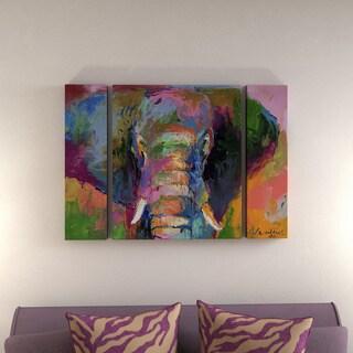 Richard Wallich 'Elephant 2' Three Panel Set Canvas Wall Art