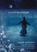 A Cool Moonlight (Paperback)