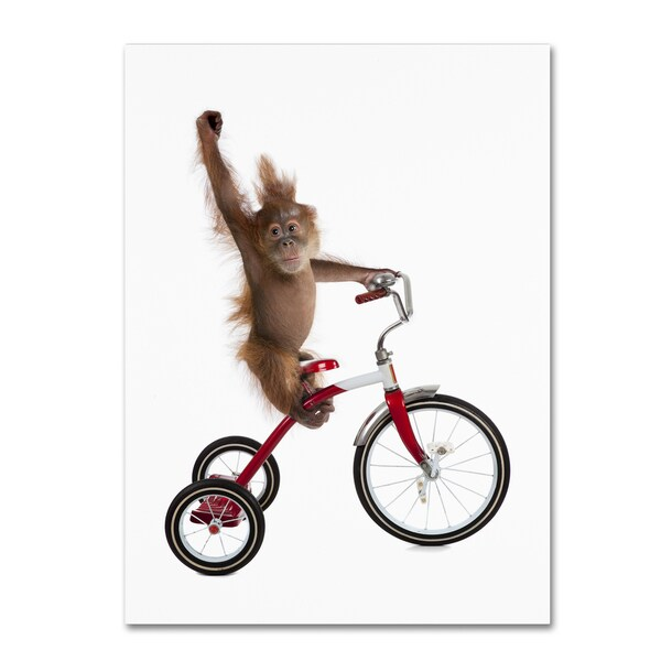 J Hovenstine Studios 'Monkeys Riding Bikes #2' Canvas Wall Art
