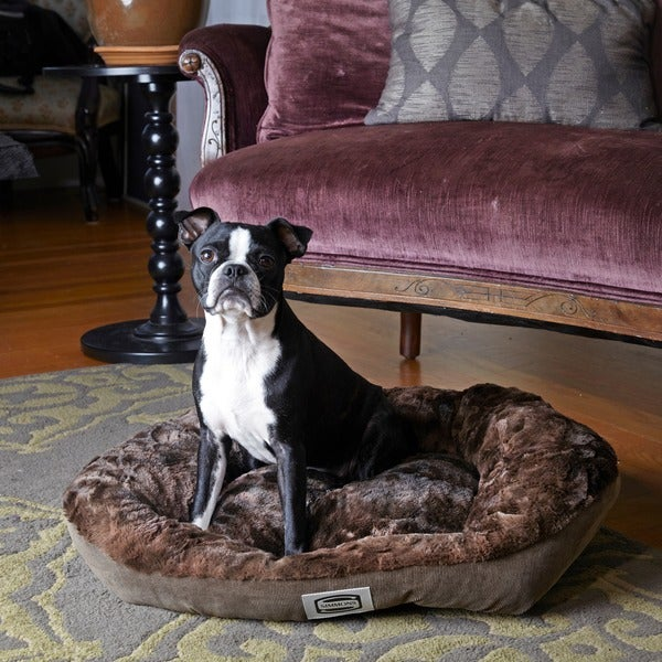 Simmons Supreme Sleep Plush Dog Bed