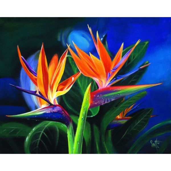 Scott Westmoreland 'Birds of a Feather' Gallery Wrapped Canvas