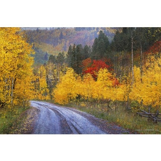 """Marmont Hill - """"Wet Road Peak of Autumn"""" by Chris Vest Painting Print on Canvas"""