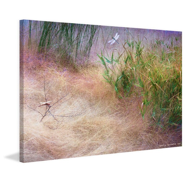"Marmont Hill - ""Muhly Grass Textures"" by Chris Vest Painting Print on Canvas"