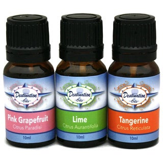 Destination Oils Lime/ Tangerine/ Grapefruit Citrus Essential Oil Aromatherapy Gift Set