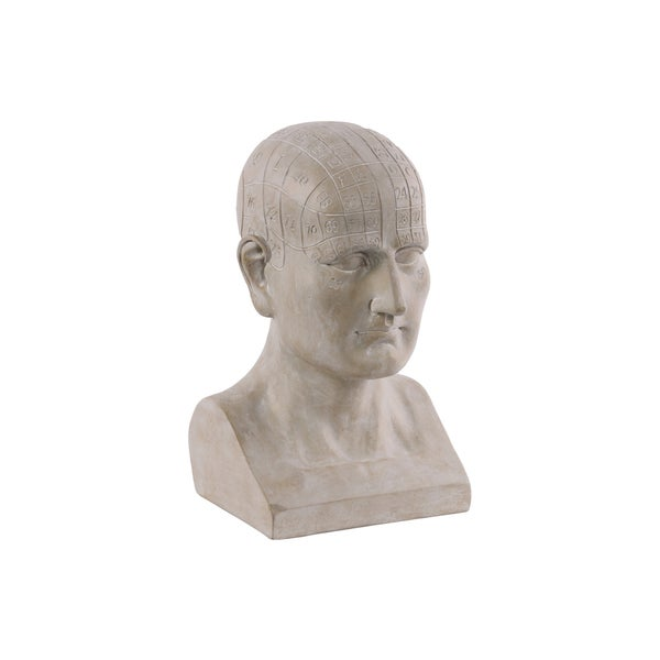 Engraved Polyresin Matte Beige Phrenology Bust