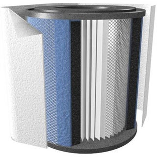 FR200 Replacement Filter  1500 Sq. Ft. Room Coverage  Designed For Healthmate Junior A200 Air Purifier (Sold Separately)  5 Year Filter Life  Medical Grade 357272