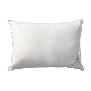 Pandora de Balthazar Hungarian Goose Down Soft Insert Boudoir Travel Airplane Pillow