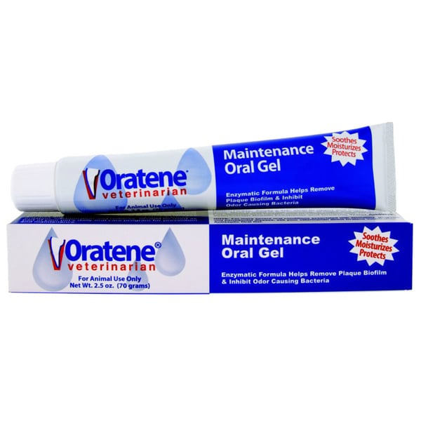 Oratene Maintenance Pet Oral Gel