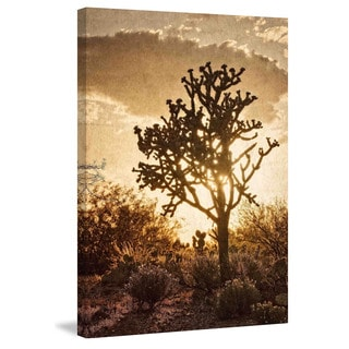 "Marmont Hill - ""Sonoran Sun"" by Robertson Painting Print on Canvas"