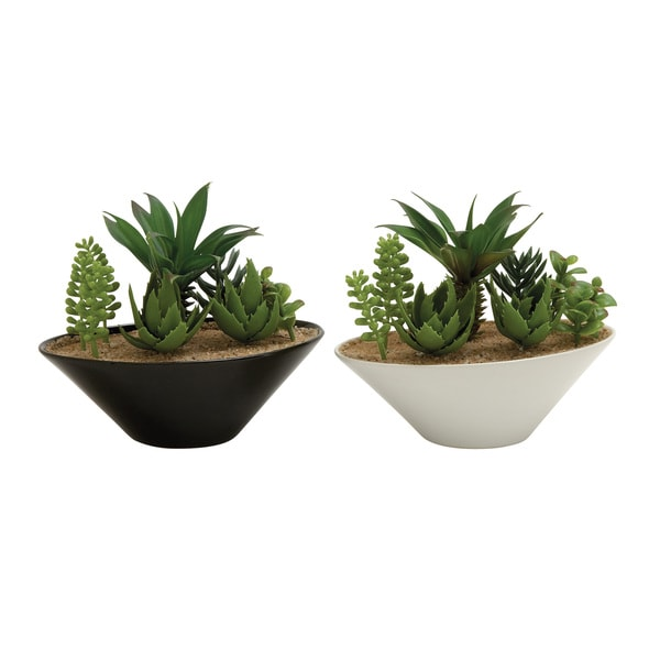Assorted PVC Ceramic Bowl-like Succulents (Set of 2)