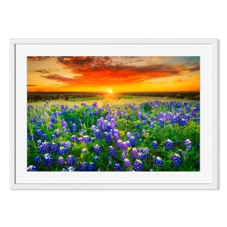 Bluebonnets during a Texas Sunset Print on Paper Framed Print