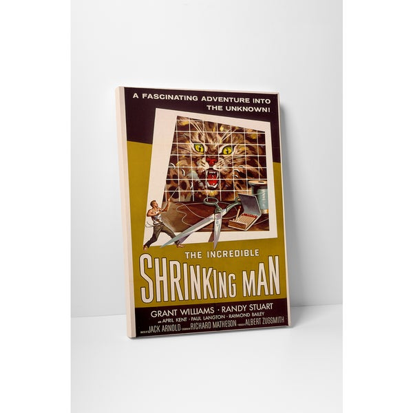 Shrinking Man' Gallery Wrapped Canvas Wall Art