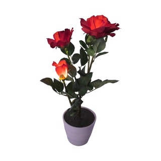 Creative Motion Home 19-inch 3-LED Warm White Decorative Lighted Red Roses with Vase