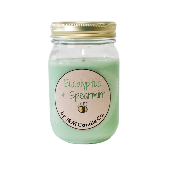 J&M Candle Company 100-percent Natural 16 oz 'Eucalyptus And Spearmint' Soy Candle