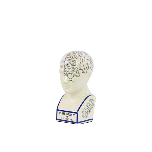 Ceramic Gloss Finish White Small Phrenology Bust with Printed Labels