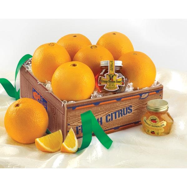 Florida Keepsake Mini-Deluxe Citrus and Honey Gift Pack (5 Pounds)