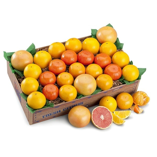 Fresh Florida Rainbow Premium Citrus Variety Fruit Box (5 Pounds)