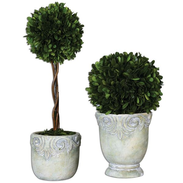 Preserved Boxwood Ball Topiaries (Set of 2)