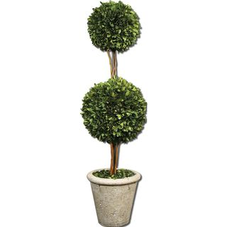 Two Sphere Topiary Preserved Boxwood - Green