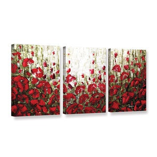 ArtWall Susanna Shaposhnikova's Olive Red Poppies, 3 Piece Gallery Wrapped Canvas Set
