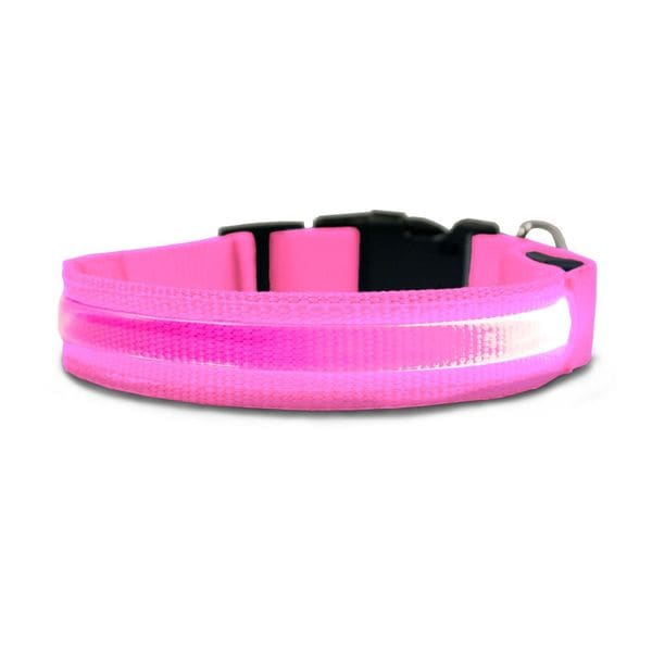 Furhaven LED Safety Pet Collar