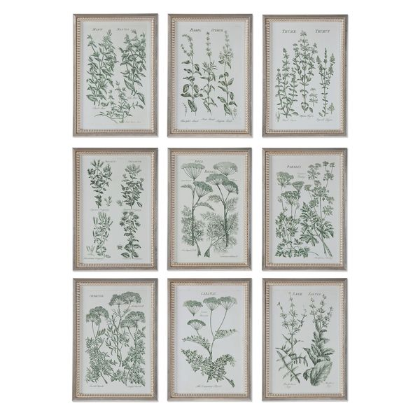 Herb Garden Prints (Set of 9