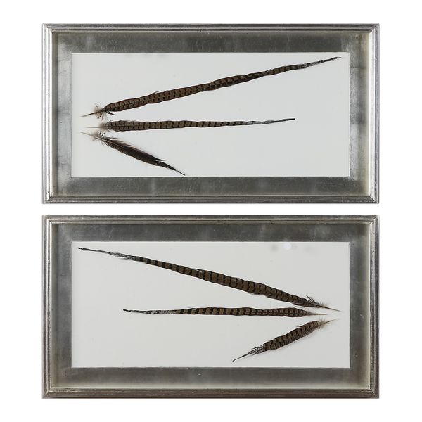 Pheasant Feathers Wall Art (Set of 2)