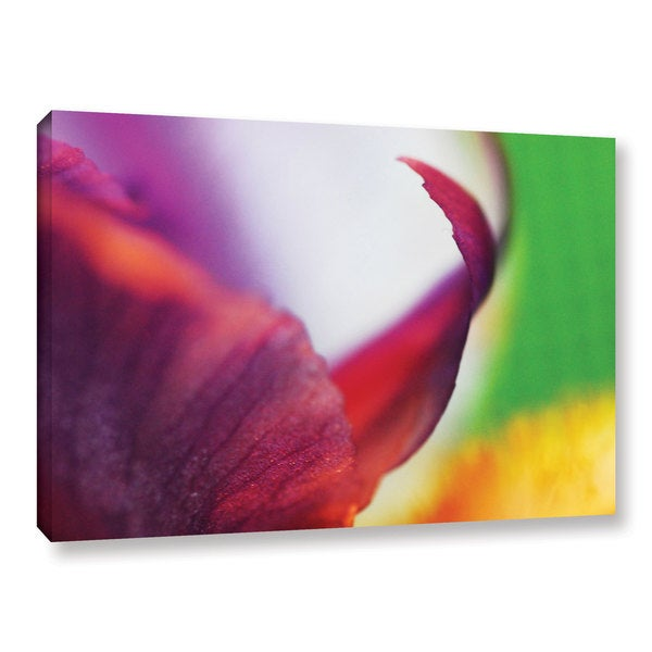 ArtWall Sydney Schardt's Curved Petal, Gallery Wrapped Canvas