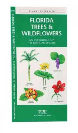Florida Trees & Wildflowers: A Folding Pocket Guide to Familiar Species (Paperback)