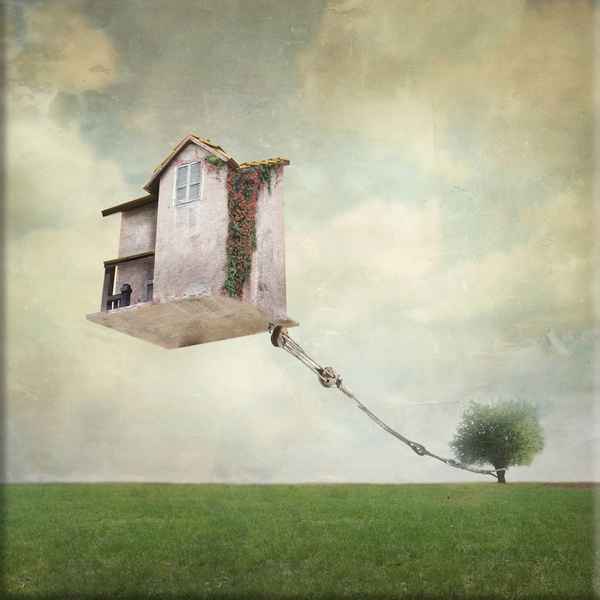 Grounded' 40x40 Giclee Canvas Wall Art