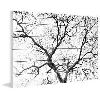 "Parvez Taj - ""Black Branches"" Painting Print on White Wood"