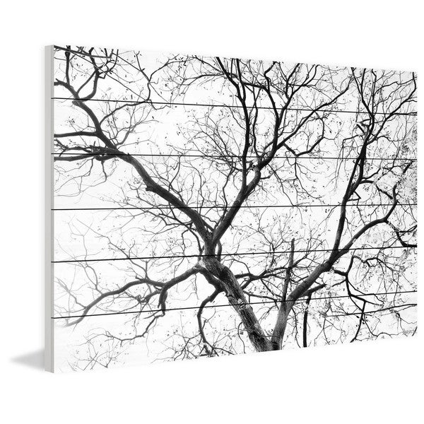 "Parvez Taj - ""Black Branches"" Painting Print on White Wood"