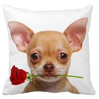 Valentine's Chihuahua Fawn With a Rose 16-inch Throw Pillow