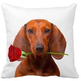 Valentine's Dachshund Brown With a Rose 16-inch Throw Pillow