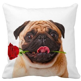Valentine's Pug Fawn With a Rose 16-inch Throw Pillow