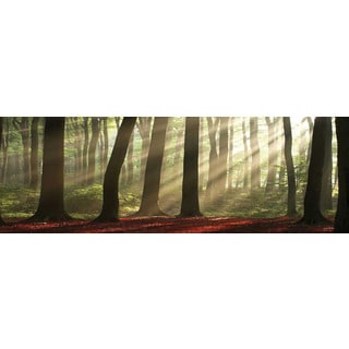 Selections by Chaumont Glass Art Forest Morning